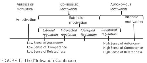 Self-Determination Theory Meets Solution-Focused Change Autonomy, competence and relatedness support in action.pdf